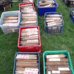 Sorting out the York Rally pitch number pegs: March 2015